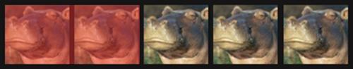 2 skeptical hippos